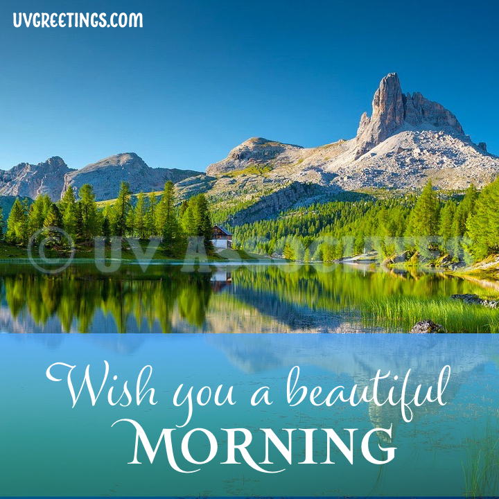 Good Morning Image with Blue Skies complemented by bright Green Trees