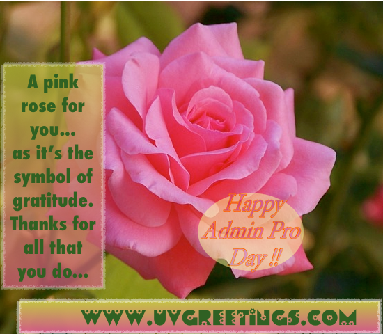 Pink Rose for saying Thank you for all you do on Admin Pro Day