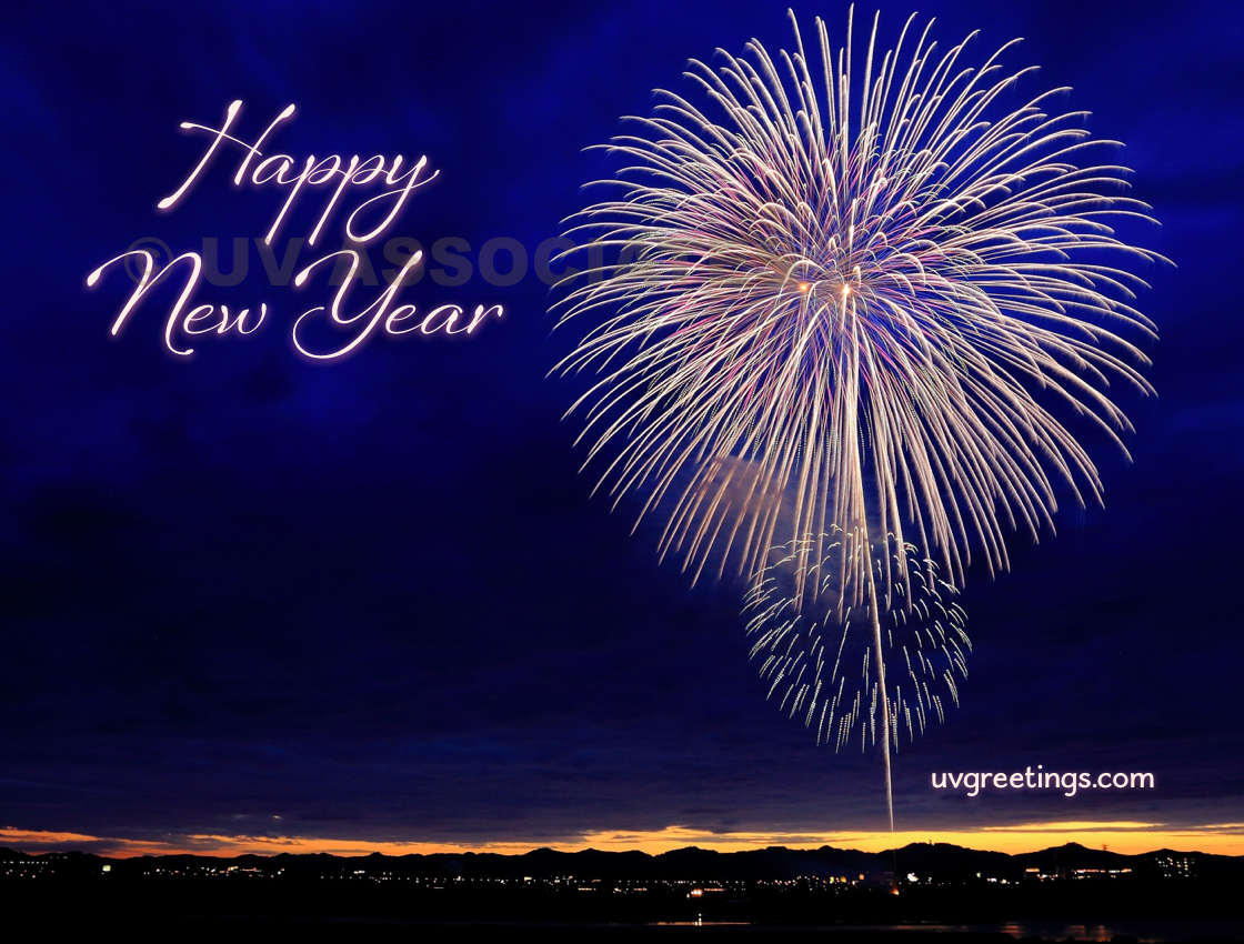 Fireworks! Happy New Year!!